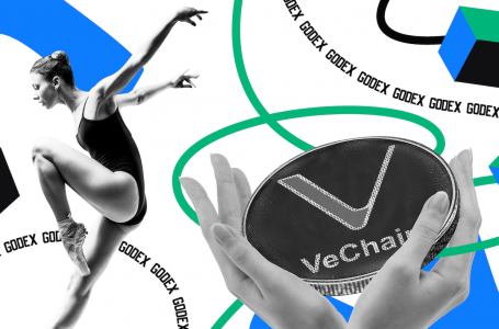 Vechain Price Prediction for 2020-2025