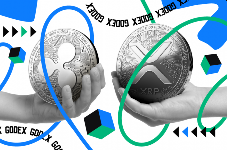 Ripple and XRP – Are They Actually the Same Thing?