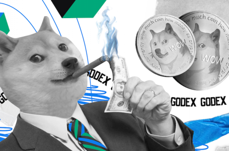 Predictions about Dogecoin Price