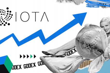 Price predictions MIOTA (IOTA) 2020-2025