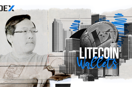 Top 5 Litecoin wallets for LTC storage in 2020