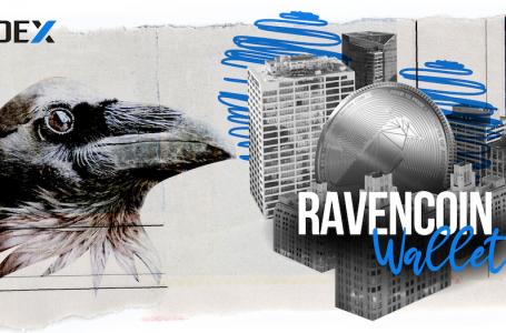Best Ravencoin Wallet