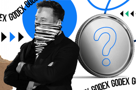 What if Elon Musk Will Create a Cryptocurrency?